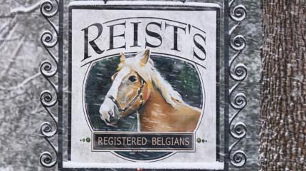 Reist's