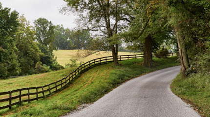 Fence & Road