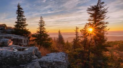 Sun Rise II